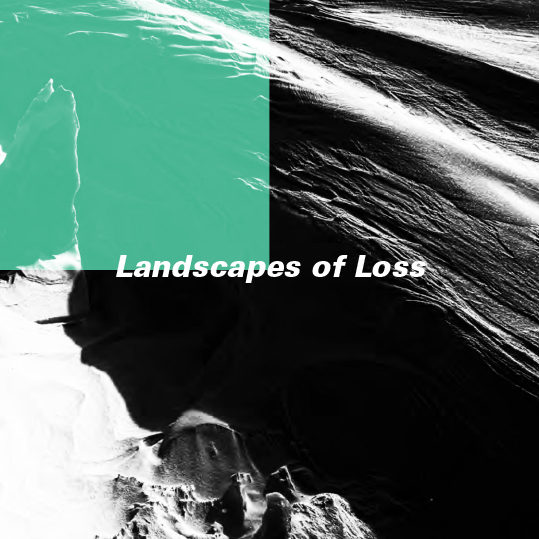 Catalogue_landscape of lost_Nezaket Ekici&Shahar Marcus-1 copy